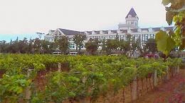 Chateau-Changyu