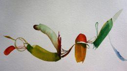 Laura Barbuto watercolour painting